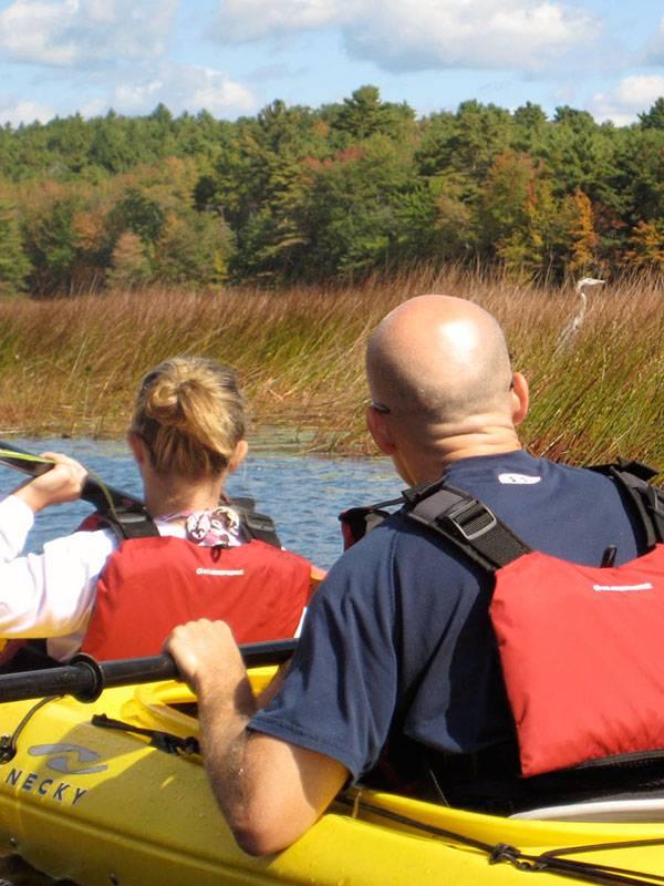 Lake Kayaking Wildlife Maine