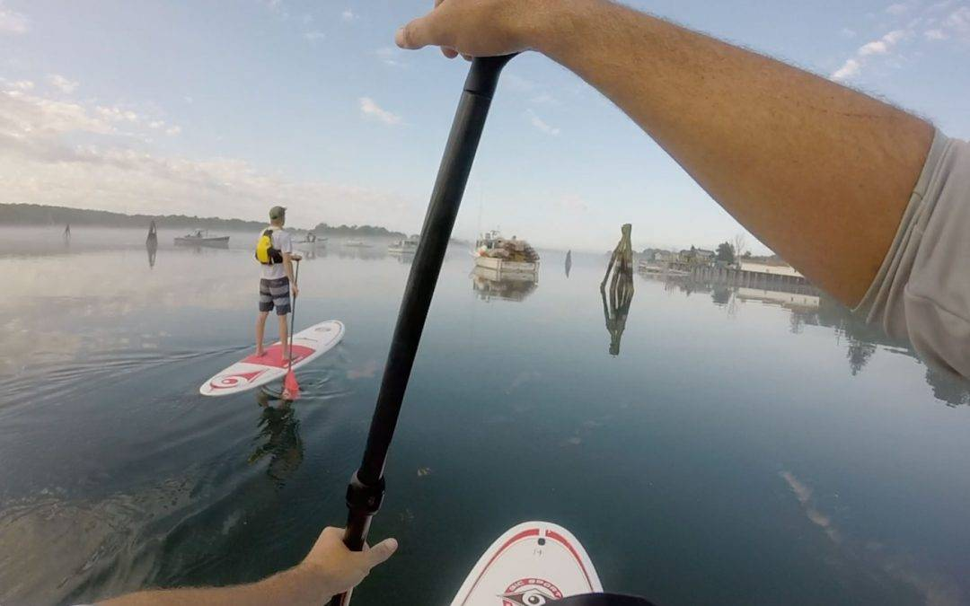 Stand Up Paddleboard Tours with Maine Kayak