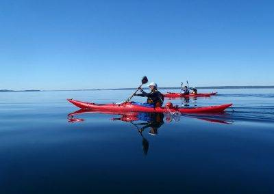Maine Sea Kayak Tours