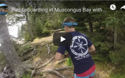 Paddleboarding in Muscongus Bay Maine