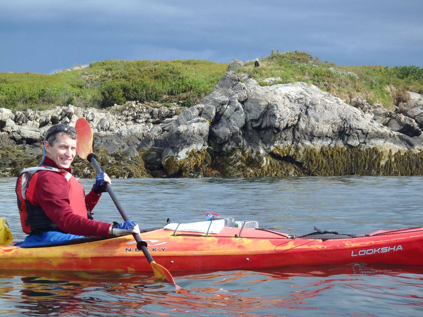 Sea Kayaking 2 Hour Wildlife Trips – $49